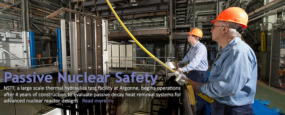 Passive Safety for Nuclear at Argonne